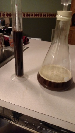adventuresinhomebrewing.beer